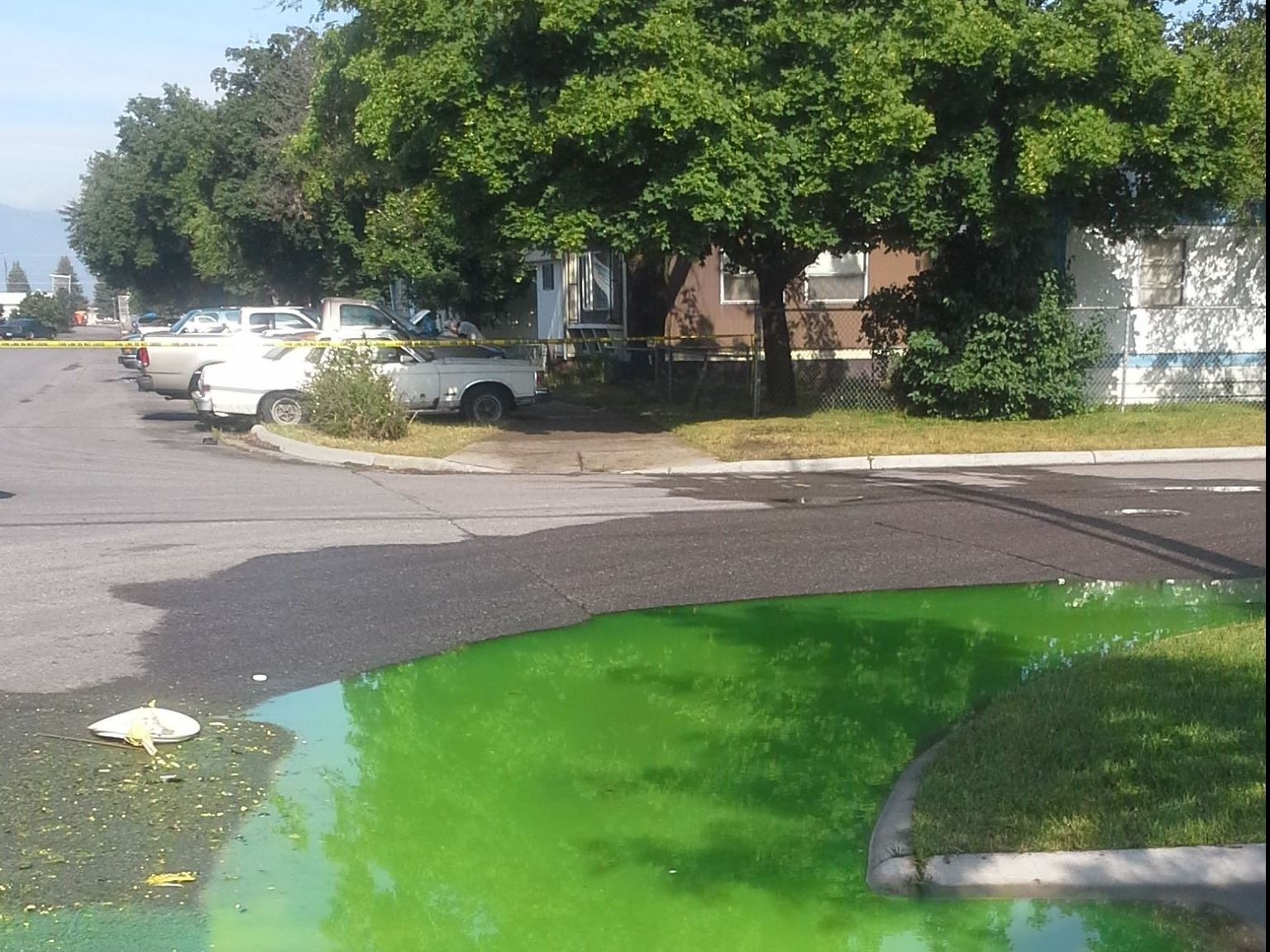 Image showing bright green liquid pooling over the curb and crosswalk in a Missoula Residential Neig