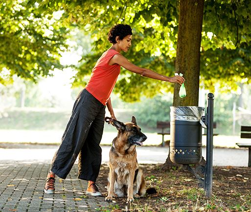 woman placing bagged dog waste in trash